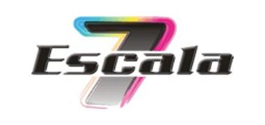 escala 7